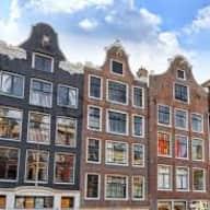 Petsitter needed for 2 cats in Amsterdam