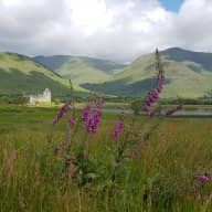 Western Highlands Scotland with 2 Quiet Elderly Dogs (Loch Awe, Mountains, Kilchurn Castle, Oban)