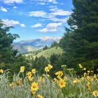 Fall in Beautiful Jackson Hole, Wyoming!