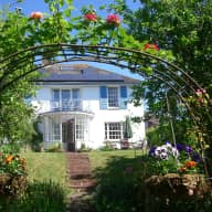 Sitter needed for beautiful house and garden with resident cat in Exeter UK