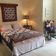 Sitter needed for cat; lovely townhouse on lake near Metro access to Washington, DC