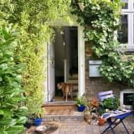 House and pet sitter needed for December in beautiful Copenhagen