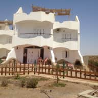 House- and Petsitting in Safaga at the Red Sea (Egypt)