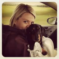 Pet sitter needed for adorable sausage dog & cat in Northern Ireland - June 2015