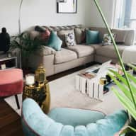 Putney Apartment with amazing views and one gorgeous fur baby called Nobu