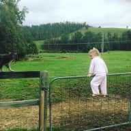 Yarra Ranges House and Pet Sitter