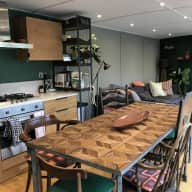Cat sitter required on houseboat in London with stunning river views