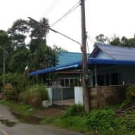 Pets and house need love in beautiful Ao Nang, Thailand.