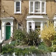 Family house in Central Hove (Brighton and Hove), home to Pixel, the 6 year old Border terrier.