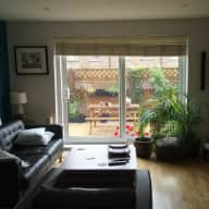 Central London, lovely garden flat, lovely cat.  Sitter needed 1st-15 Sept 2018
