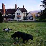 Worcestershire/Herefordshire Border Home/Pet Sit