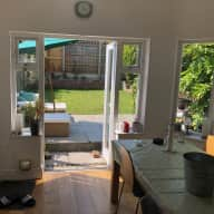 Sitter needed for Dotty in Muswell Hill, North London
