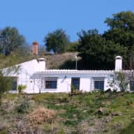 Reliable sitter(s) wanted to look after 5 or 6 cats in rustic detached villa in Spain