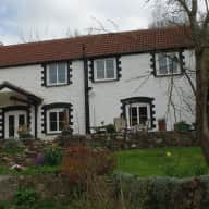Lovely Wye Valley home, 1 cat and 7 tortoises looking for company!