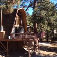 California Forest Getaway, cabin with two great dogs