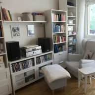 Experienced, reliable, sensitive (nonsmoking) cat sitter wanted in Graz, Austria in a sweet, tidy city flat.