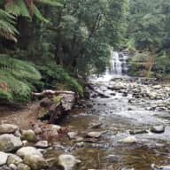 Longford Tasmania - Feast of Beauty & History
