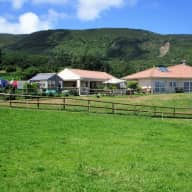 House, horse, dogs and cat sitter needed in Faial