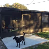 House/Pet Sitting opportunity near Orlando, FL