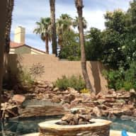 Fabulous Vegas house, young active dogs that need active couple to hang out with them.