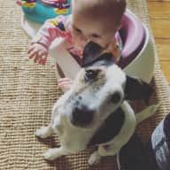 Family with Jack Russell Terrier