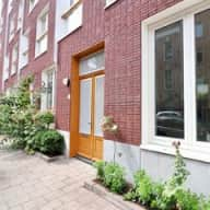 Cat care required in Amsterdam in De Pijp!