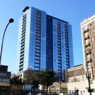 Amazing high rise one bedroom with 2 great cats in downtown Portland