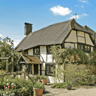 Rural West Sussex House Sitting for red setters