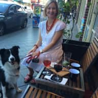 Dog sitter - Border Collie for August, Marrickville