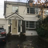 House in Dublin suburbs with two cats and two dogs