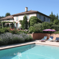 2 dogs and a cat looking for pet/house sitters in Gascony, 40k west of Toulouse