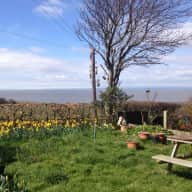 Cat Sitter for  house with Panoramic Sea Views in Lancashire, England