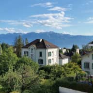 Sitter Needed for cat in Lausanne, Switzerland