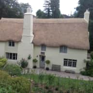 Sitter for beautiful thatched home and 2 friendly dogs