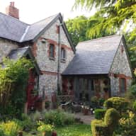 Flint cottage on the edge of South Downs with two cats and two tortoises and an elderly dog