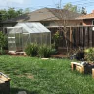 Mini Farm in Sunnyvale, CA