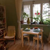 *URGENT* Sitter needed in cozy Apartment in Prague with Toti the Staffie