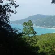 Seychelles: paradise plus cat