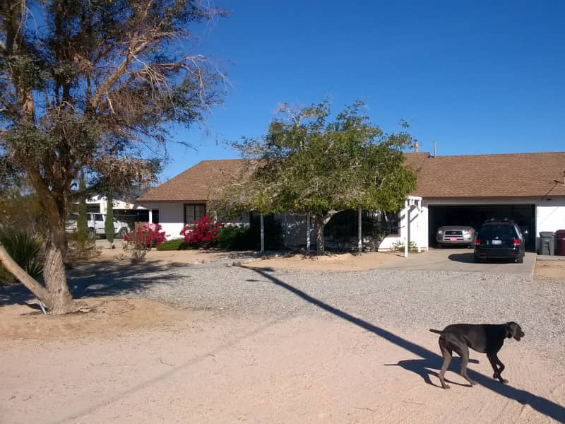Housesitting assignment in Twentynine Palms, California, United States