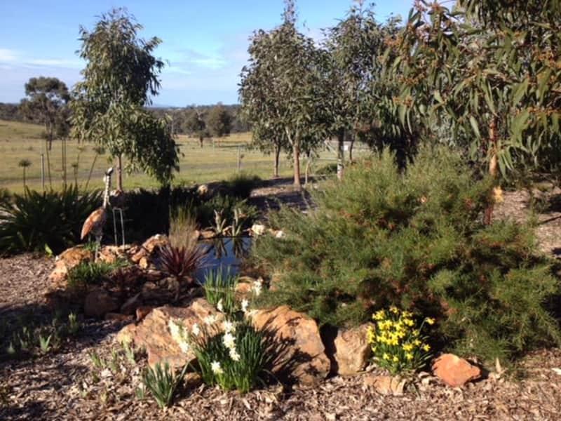 Housesitting assignment in Eppalock, Victoria, Australia