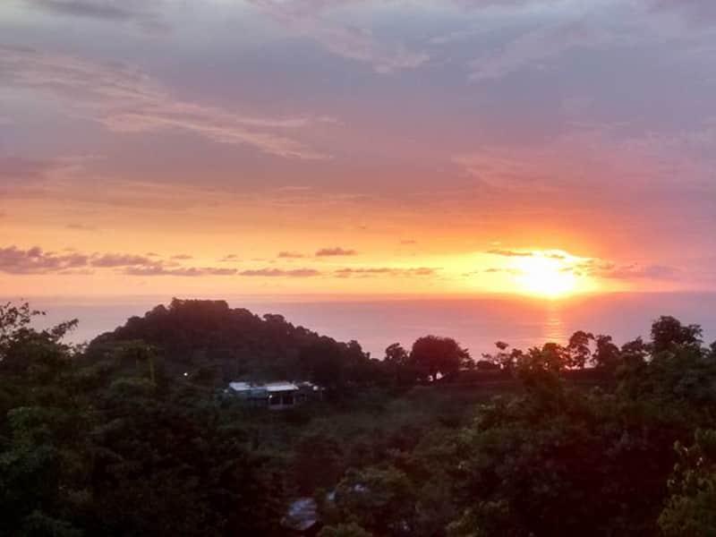 Housesitting assignment in Manuel Antonio, Costa Rica
