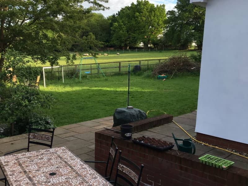 Housesitting assignment in Westmill, United Kingdom