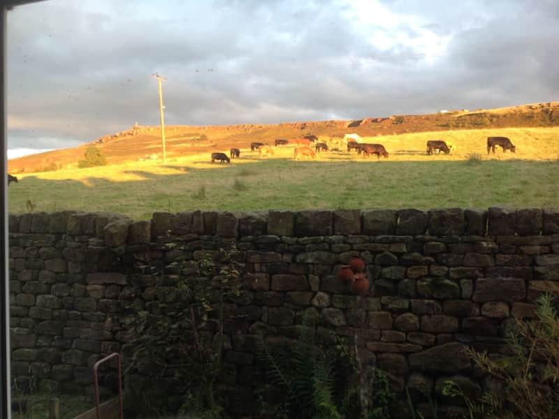 Housesitting assignment in Skipton, United Kingdom