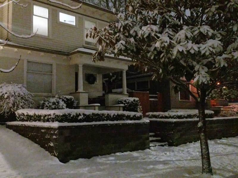 Housesitting assignment in Seattle, Washington, United States