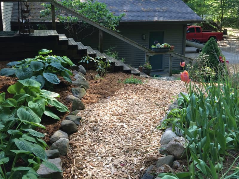 Housesitting assignment in Holland, Michigan, United States