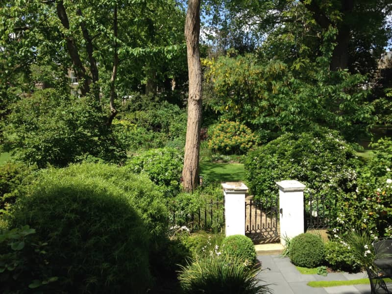 Housesitting assignment in West Holland Park, United Kingdom