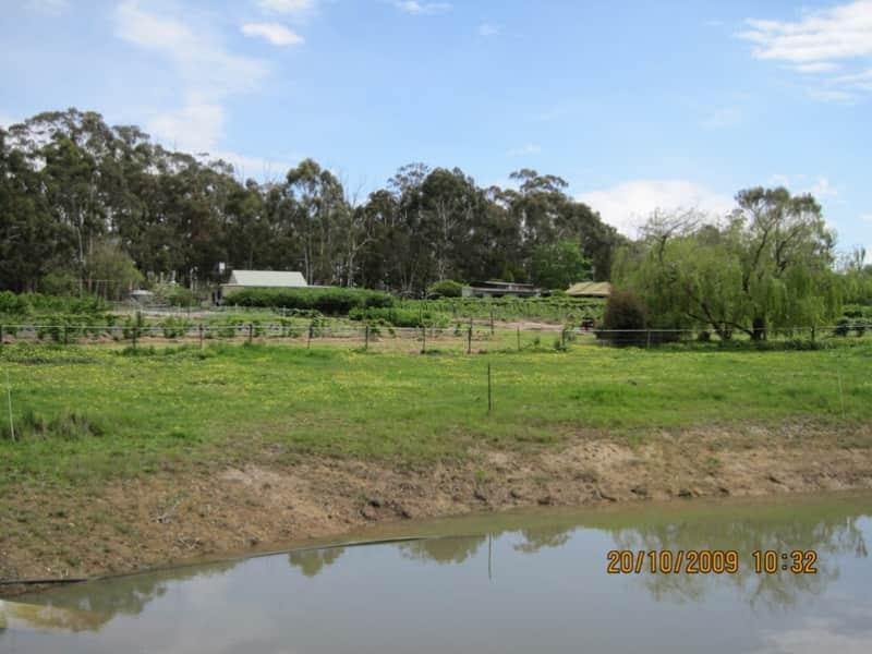 Housesitting assignment in Birregurra, Victoria, Australia