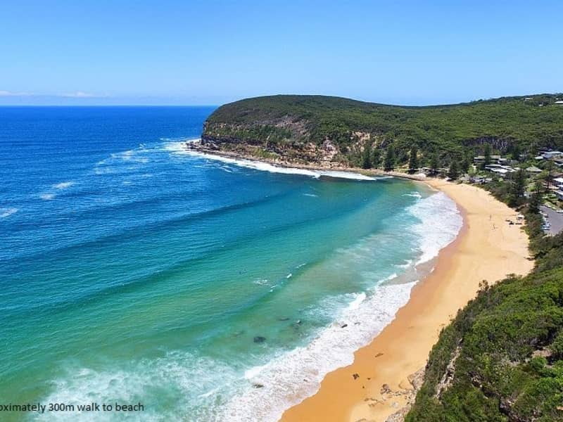 Housesitting assignment in Macmasters Beach, New South Wales, Australia