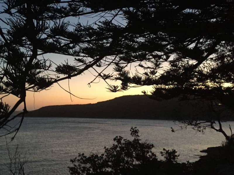 Housesitting assignment in Fairlight, New South Wales, Australia