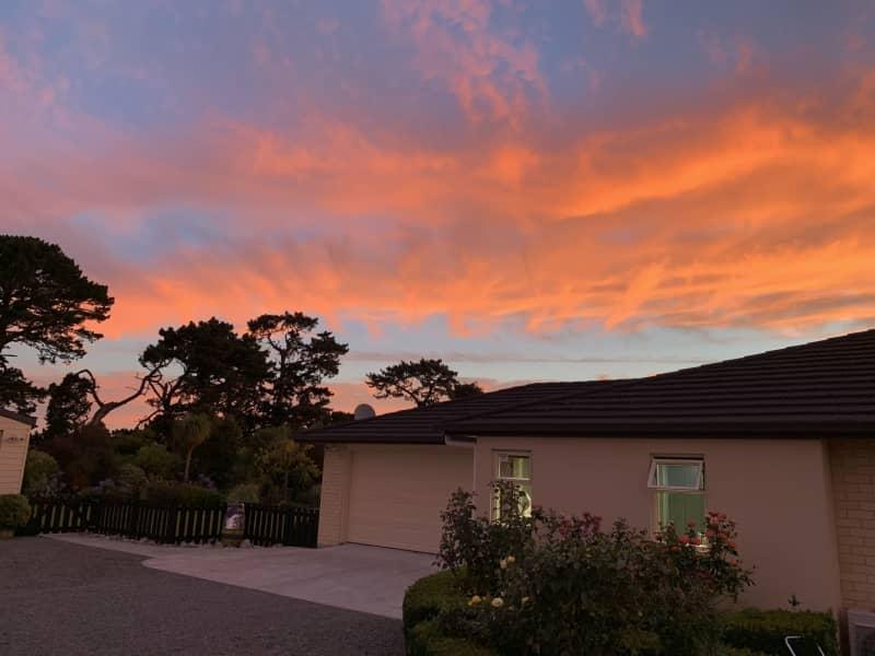 Housesitting assignment in Masterton, New Zealand